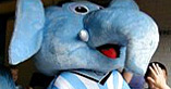 photo : sky blues mascot